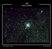 M11 Open Cluster